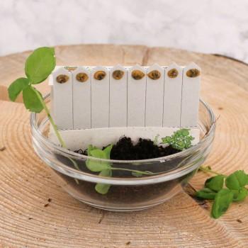 SaatSticks für Küchenkräuter - 8 Stück