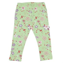 Fairtrade Baby Leggings grün
