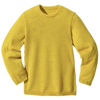 Wolle Basic Pullover in curry-gelb
