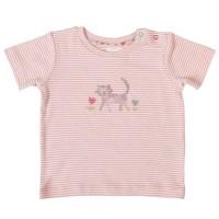 Bio T-Shirt Baby Druckknöpfen Katze