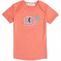 Babyshirt kurzarm koralle Elefant