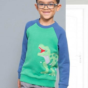 T-Rex Sweatshirt langarm in grün
