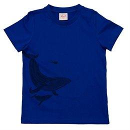 Unterricht auf dem Shirt - Größe Wal zum Menschen