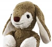 Vorschau: Hase Benni von den Kindergartentieren