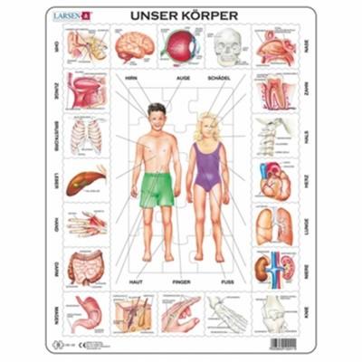 larsen-lernpuzzle-schulkinder-der-koerper-greenstories