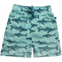 Jungen Shorts Haie in jade-grün