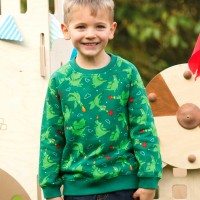 Sweat Pullover Drache grün