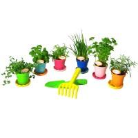 Vorschau: Pflanztopf bioline - 3er Set