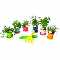 Vorschau: Pflanzen-Set bioline