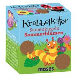 Krabbelkäfer Samenkugel Sommerblume